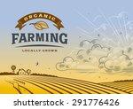 organic farming landscape. ... | Shutterstock .eps vector #291776426