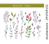watercolor floral collection... | Shutterstock .eps vector #291939152