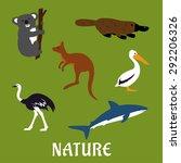 Australian Native Animals And...