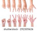 set of zero to five fingers... | Shutterstock . vector #292335626
