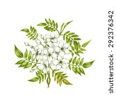 isolated jasmine flower on a... | Shutterstock .eps vector #292376342