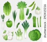 set of fresh green vegetables.... | Shutterstock .eps vector #292415216