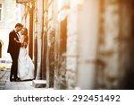 lovely wedding couple kissing... | Shutterstock . vector #292451492