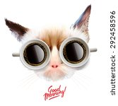 good morning  funny grumpy cat... | Shutterstock .eps vector #292458596
