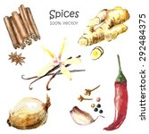 watercolor spices isolated ... | Shutterstock .eps vector #292484375