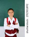 beautiful little girl standing... | Shutterstock . vector #292501892