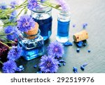 floral spa and wellness ... | Shutterstock . vector #292519976