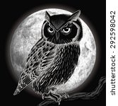Owl And Moon At Night. Vector...