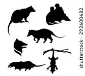 Opossum Icons And Silhouettes....
