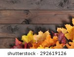 Original Autumn Foliage In...