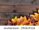 Original Autumn Foliage In...