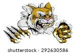 a tough wildcat or cougar...