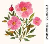 hand painted watercolor vector... | Shutterstock .eps vector #292803815