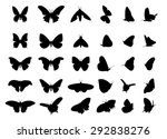 Set Of Flying Butterfly...