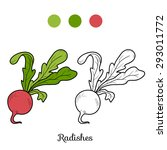 coloring book  fruits and... | Shutterstock .eps vector #293011772