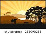 african savanna an evening...   Shutterstock .eps vector #293090258