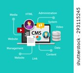 cms content management system... | Shutterstock .eps vector #293115245