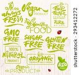 hand drawn calligraphic organic ... | Shutterstock .eps vector #293412272