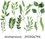 a set of vector watercolor... | Shutterstock .eps vector #293506796