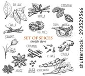 set of spices in sketch style.... | Shutterstock .eps vector #293529566