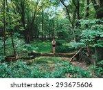 let's go explore   Shutterstock . vector #293675606