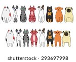 Stock vector standing and sitting cats and dogs 293697998
