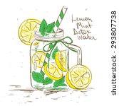 hand drawn sketch illustration... | Shutterstock .eps vector #293807738