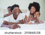 happy family having fun... | Shutterstock . vector #293868158
