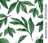 summer leaves. seamless  hand...   Shutterstock .eps vector #293923268