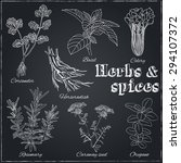 vector hand drawn set with... | Shutterstock .eps vector #294107372