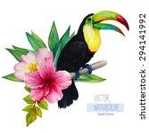 vector watercolor hand drawn... | Shutterstock .eps vector #294141992