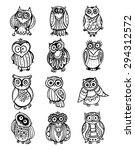 Stock vector collection of cute black and white owls hand drawn graphic style 294312572