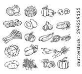 vector set  hand drawn... | Shutterstock .eps vector #294329135