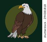 eagle | Shutterstock .eps vector #294381818