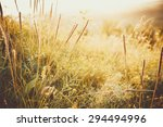 beautiful rural landscape with... | Shutterstock . vector #294494996