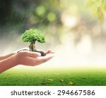 earth day concept  human hand...   Shutterstock . vector #294667586