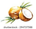 watercolor vector coconuts | Shutterstock .eps vector #294737588