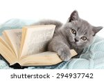 Stock photo cute gray kitten with open book on warm plaid closeup 294937742