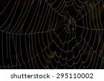spider web with water droplets... | Shutterstock . vector #295110002
