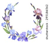 Vector illustration - watercolor floral frame with purple brown and violet iris flowers