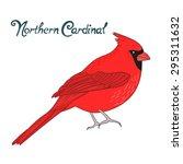 Bird Northern Cardinal Vector...