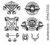 vintage gym emblems and labels | Shutterstock .eps vector #295627232