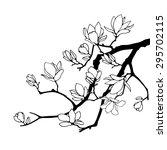 magnolia graphic branches... | Shutterstock .eps vector #295702115
