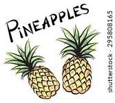 pineapple isolated. fruit label ... | Shutterstock .eps vector #295808165