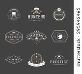retro vintage logotypes or... | Shutterstock .eps vector #295943465