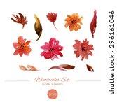 watercolor floral elements set. ... | Shutterstock .eps vector #296161046