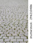Cobblestone Pavement With Moss...