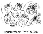set strawberry drawing.... | Shutterstock . vector #296253902