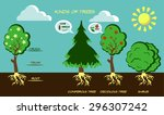 illustration of different tree... | Shutterstock .eps vector #296307242