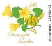 decorative cucurbit with...   Shutterstock .eps vector #296453408